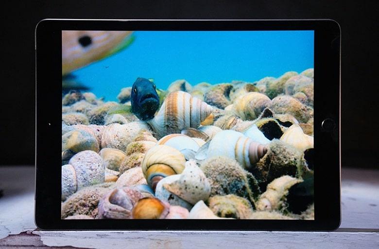 camera của iPad 10.2 inch Gen 7 - (2019) - Wifi - 32GB