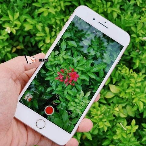 iphone-7-plus-anh-thuc-te-mau-hong-camera